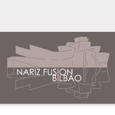 congresos-cirugia-estetica-nariz-fusion-bilbao-2011